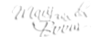 Marij van den boom Logo